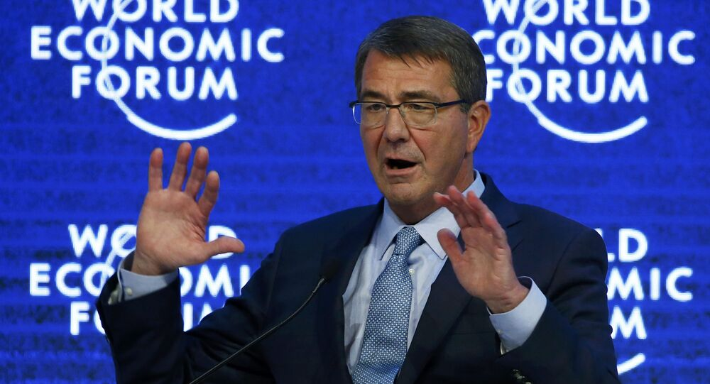 US Secretary of Defence Ashton Carter attends the annual meeting of the World Economic Forum (WEF) in Davos, Switzerland January 22, 2016.