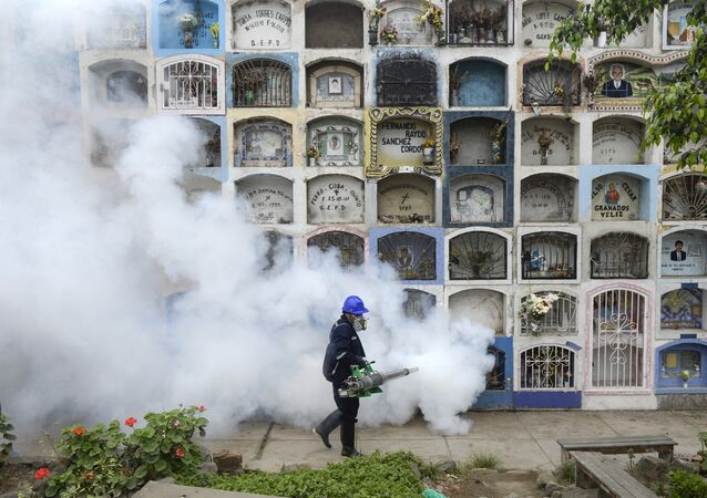 A specialist fumigates the Nueva Esperanza graveyard in the outskirts of Lima on January 15, 2016. Health officials fumigated the largest cementery in Peru and second largest in the world to prevent Chikunguya and Zika virus, which affect several South American countries