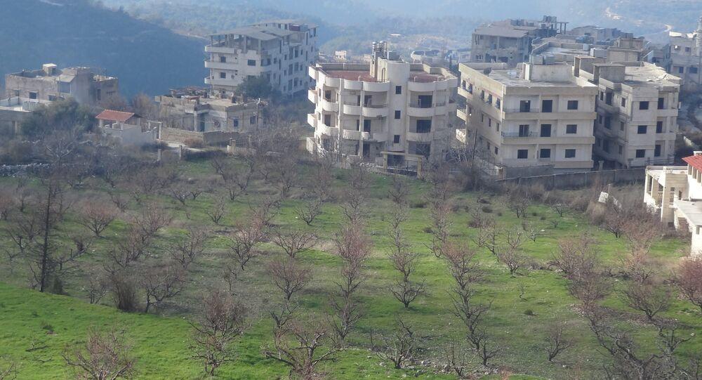 Latakia Province