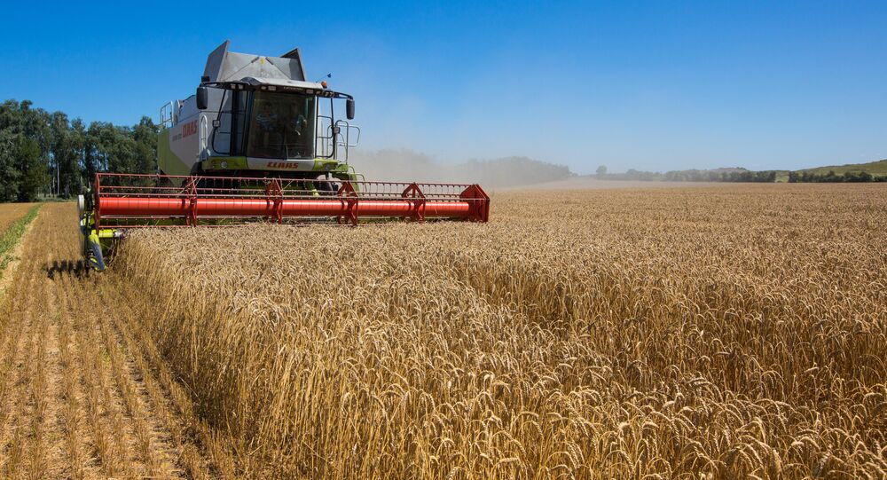 (FILES) This picture taken on July 23, 2013 in the Khmelnytskyi region displays a harvester in a field