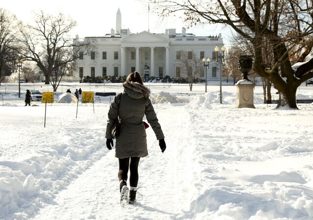 A woman walks a snowy path toward the White House in Washington January 25, 2016. The Washington area is digging out from the weekend blizzard