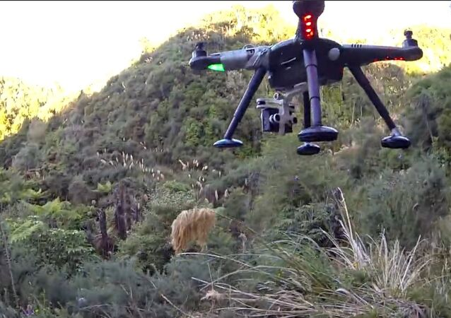 Drone shot down while filming