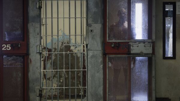 An inmate looks out from his cell in the Security Housing Unit (SHU) at Corcoran State Prison in Corcoran, California in this October 1, 2013 file photo - Sputnik International