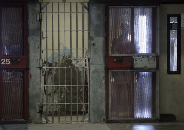 An inmate looks out from his cell in prison