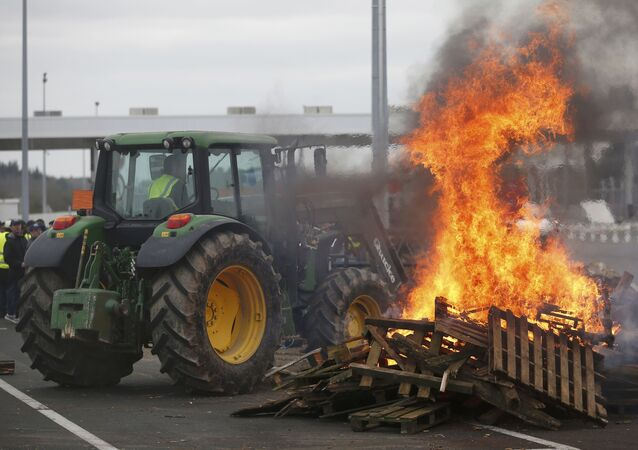 French livestock farmers gather near burning palettes to protest falling prices near at a toll booth on the autoroute in Ancenis, western France, January 27, 2016