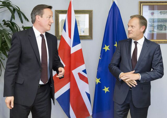 British Prime Minister David Cameron (L) is seen during a meeting with European Council President Donald Tusk in Brussels, Belgium, June 25, 2015.