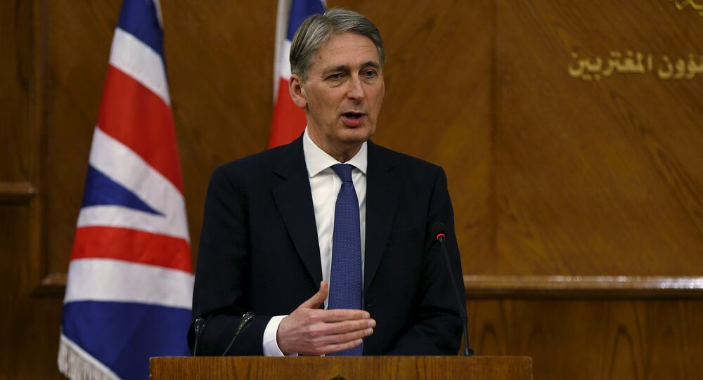 Philip Hammond speaks during a joint news conference with Jordan's Foreign Minister Nasser Judeh at the Foreign Ministry in Amman, Jordan, February 1, 2016