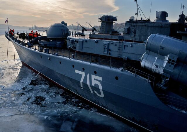 Pacific Fleet's ship detachment arrived in Vladivostok following a combat mission in the Pacific and Indian oceans