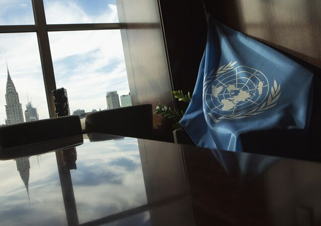 A United Nations flag is seen at U.N. Headquarters in New York September 25, 2013