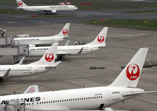 Strong wind gusts have grounded over 65 domestic flights in Japan, national media reported on Sunday.