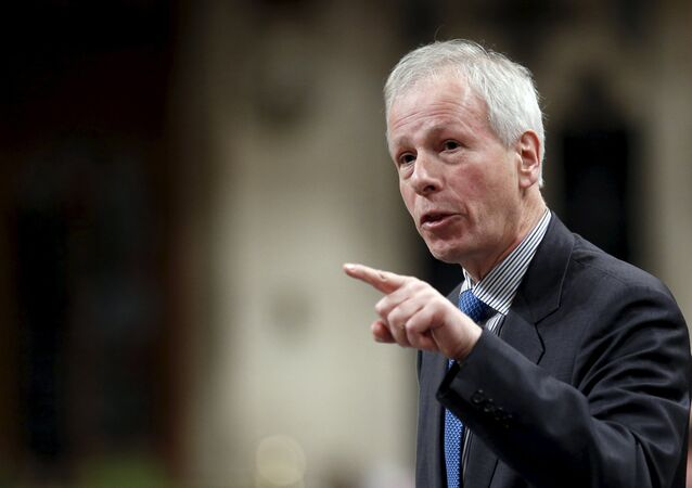 Canada's Foreign Minister Stephane Dion speaks during Question Period in the House of Commons on Parliament Hill in Ottawa, Canada