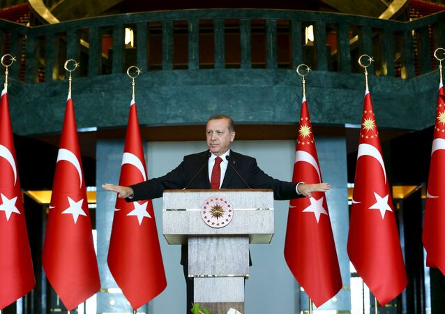Turkey's President Tayyip Erdogan addresses the audience during a meeting in Ankara, January 12, 2016.