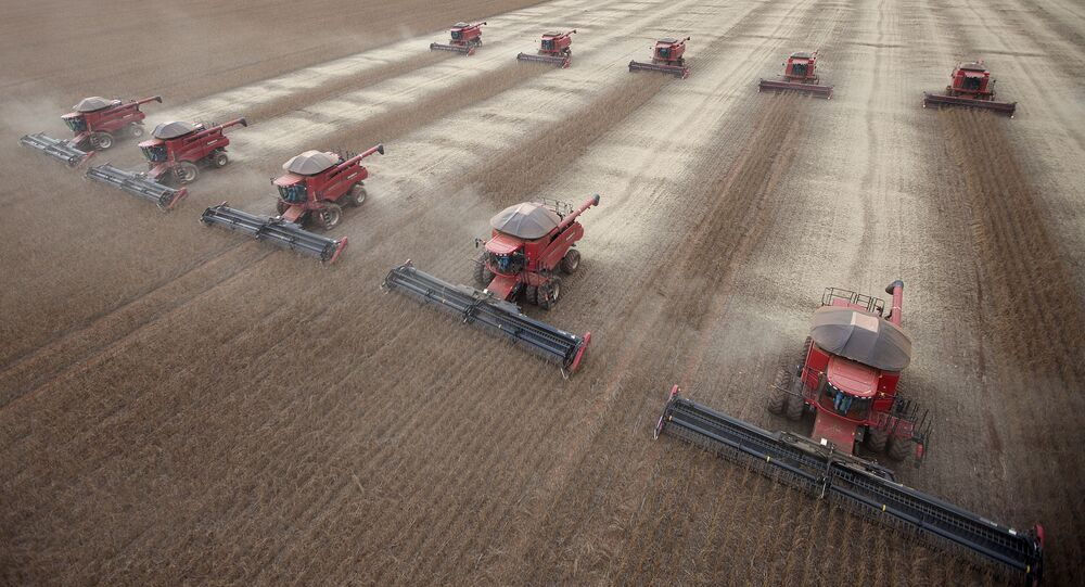 Workers use combines to harvest soybeans in Tangara da Serra, State of Mato Grosso, Brazil