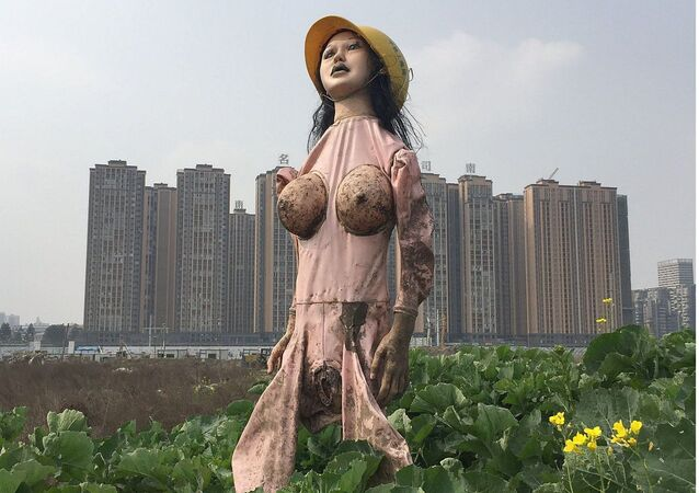 A Chinese farmer in Chengdu is using a sex doll as a scarecrow
