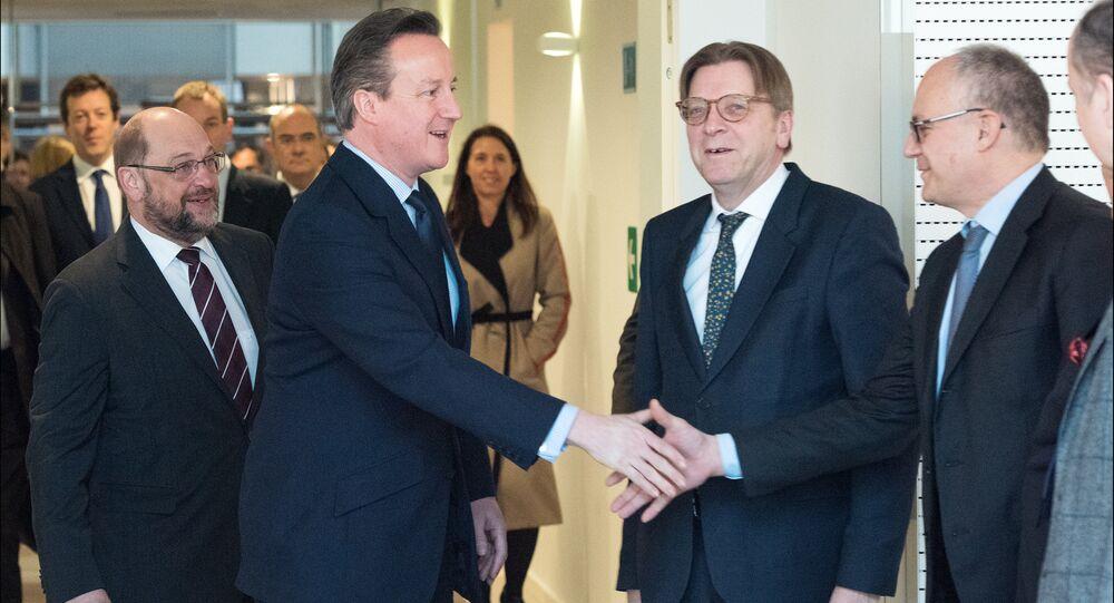 UK PM David Cameron at the European Parliament