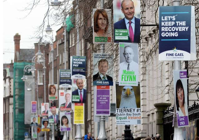 A picture shows campaign posters for the parliamentary elections on lamposts in Dublin, Ireland, on February 21, 2016.
