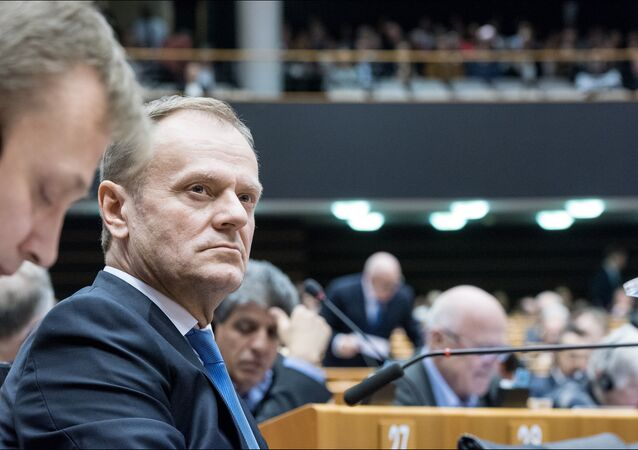 Donald Tusk, President of the European Council in the plenary.