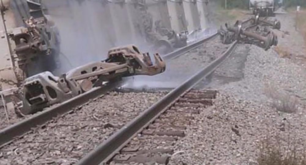 Hazardous leak reported as train derails in Ripley, NY