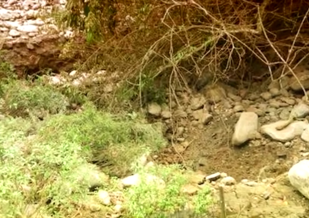 The Atoyac River, which crosses eight municipalities in the central mountainous area of eastern Mexican state of Veracruz, disappeared overnight after a giant crack opened up.