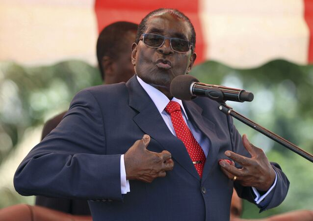 Zimbabwe's President Robert Mugabe addresses the ZANU-PF party's top decision-making body, the Politburo, in the capital Harare, in this February 10, 2016 file photo