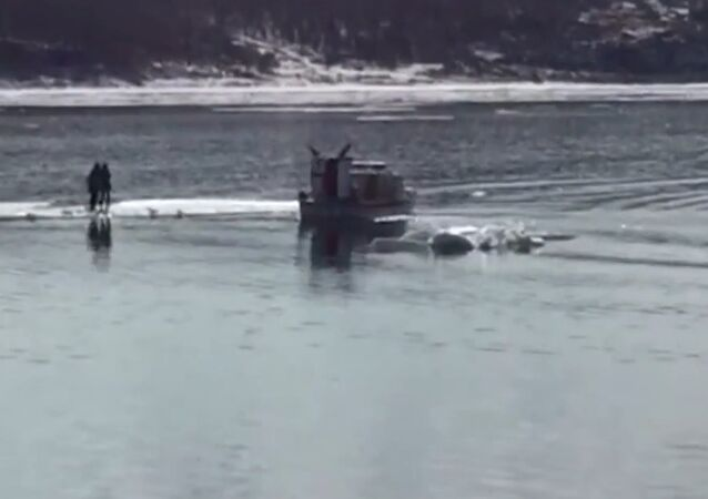 Selfie Fail: Two Teens Rescued From Ice Float
