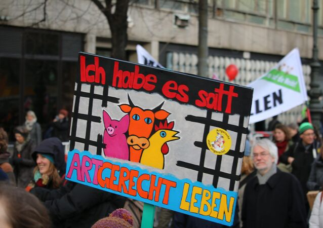 """""""We are fed up"""" anti-TTIP slogan in German"""