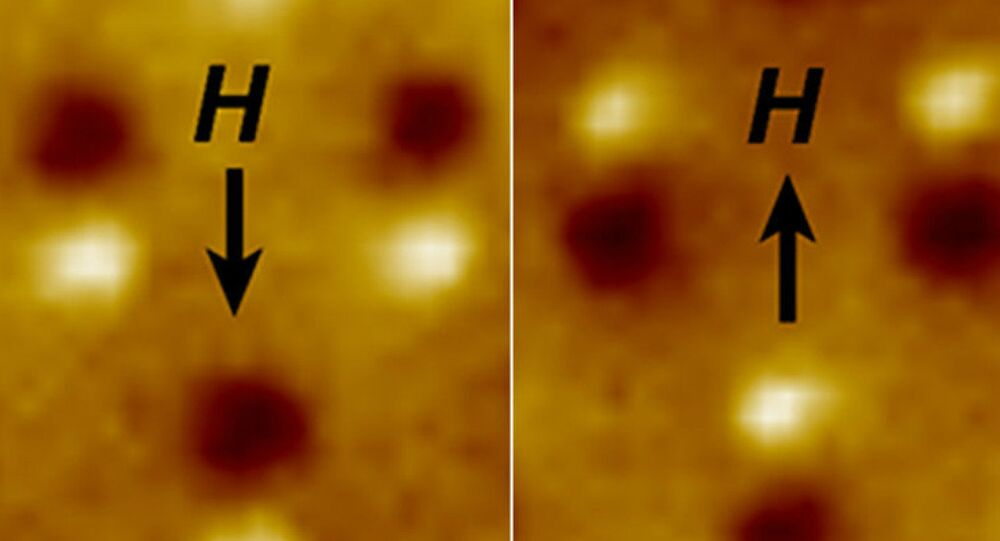 Magnetic microscope image of three nanomagnetic computer bits