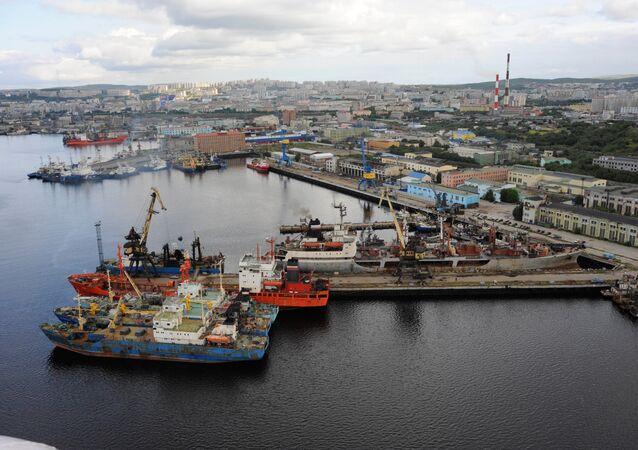 The Murmansk fishing seaport