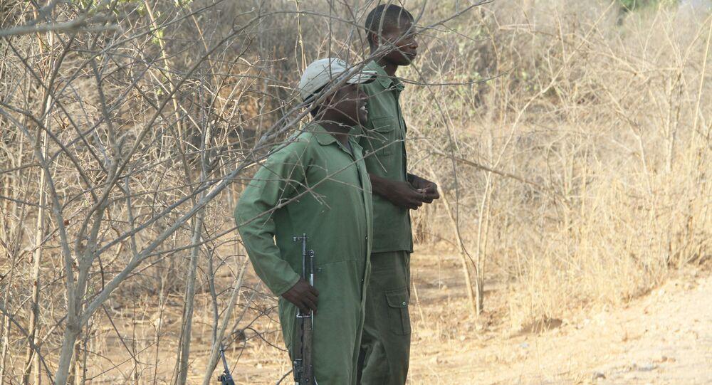 Wildlife rangers in Zimbabwe (File)