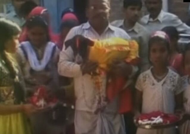 It happens only in India! A big fat dog wedding in UP with 5000 guests