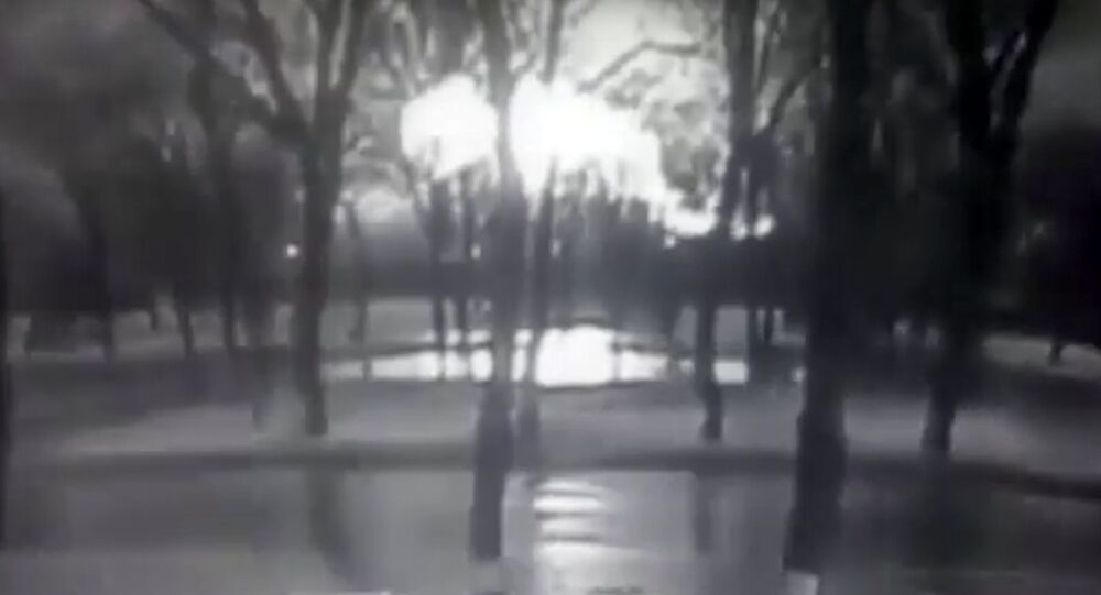This frame grab provided by Rostov-on-Don I General company from black and white CCTV footage shows road and behind line of trees fireball, believed to be a plane on fire, crashes to ground at the Rostov-on-Don airport, about 950 kilometers (600 miles) south of Moscow, Russia Saturday, March 19, 2016.