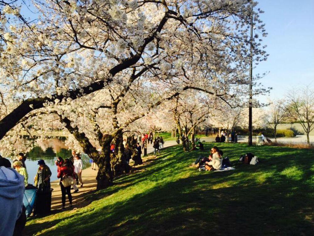 A Spring, Thursday morning.