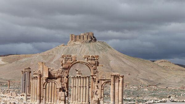 View of the ancient oasis city of Palmyra - Sputnik International