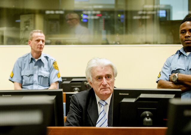 Ex-Bosnian Serb leader Radovan Karadzic sits in the court of the International Criminal Tribunal for former Yugoslavia (ICTY) in the Hague, the Netherlands March 24, 2016.