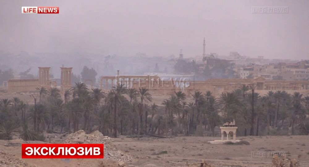 Views of Syria' liberated Palmyra