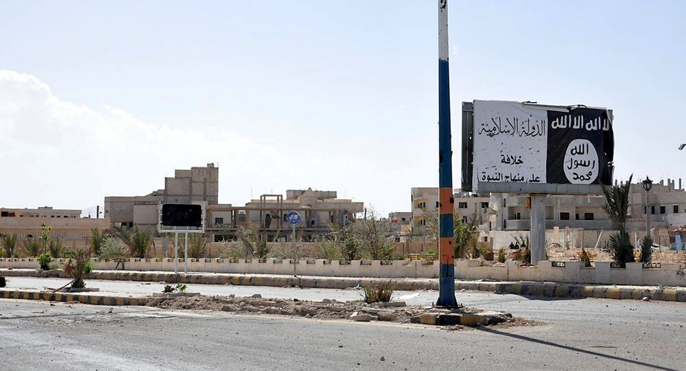 A billboard (R) belonging to the Islamic State fighters erected along a road, is pictured after forces loyal to Syria's President Bashar al-Assad recaptured Palmyra city, in Homs Governorate in this handout picture provided by SANA on March 27, 2016