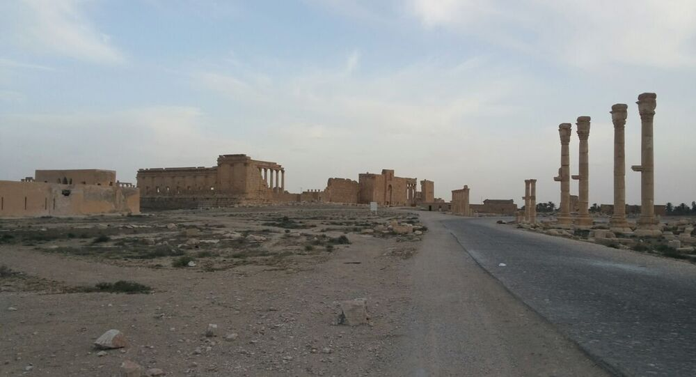 Syrian Army restores Palmyra's airport