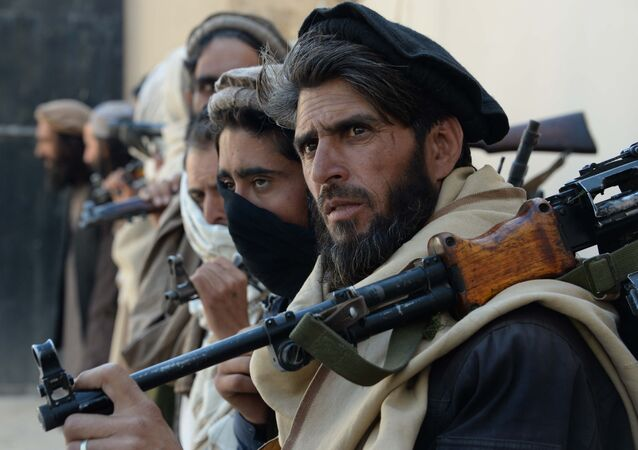 Afghan alleged former Taliban fighters carry their weapons before handing them over as part of a government peace and reconciliation process at a ceremony in Jalalabad on February 24, 2016