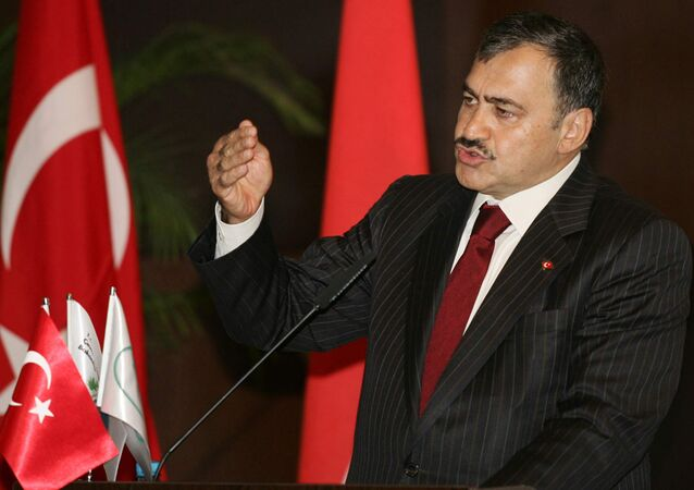 Turkish Environment Minister Veysel Eroglu speaks during a meeting on water-sharing issues in Ankara.(File)