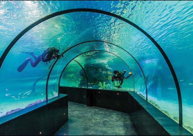 Iran's first-ever aquarium tunnel opens in Isfahan