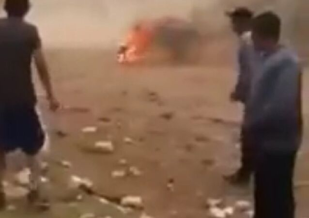 Young Mexicans set fire to a live dog