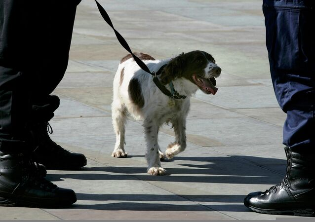 A police dog handler talks with a colleague as his sniffer dog waits outside the GMEX (Greater Manchester Exhibition centre) in Manchester, northern England, September 21, 2006.