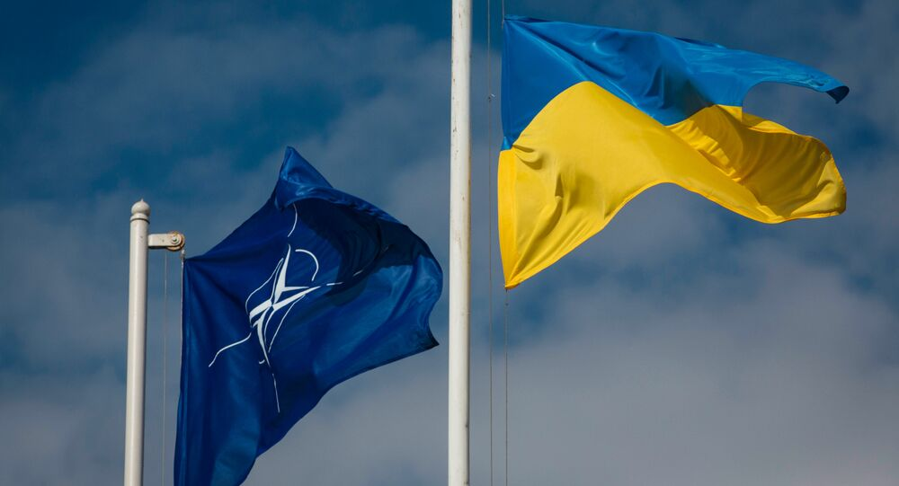 National flag of Ukraine and the NATO flag