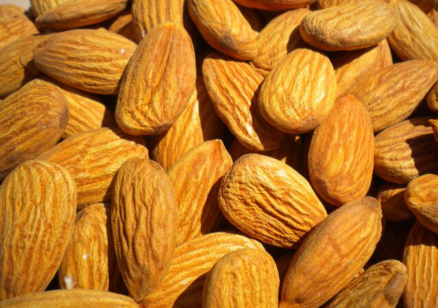 This is Nuts: Crime Rings are Stealing Truckloads of Almonds Worth Millions