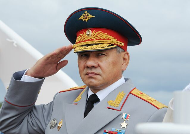 Russian Defense Minister, General of the Army Sergei Shoigu.