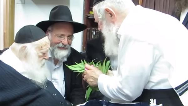 Leading Ultra-Orthodox Rabbi Says Pot's Kosher for Passover - Sputnik International