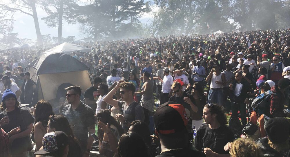 Thousands of marijuana enthusiasts gather on Hippie Hill in San Francisco's Golden Gate Park.