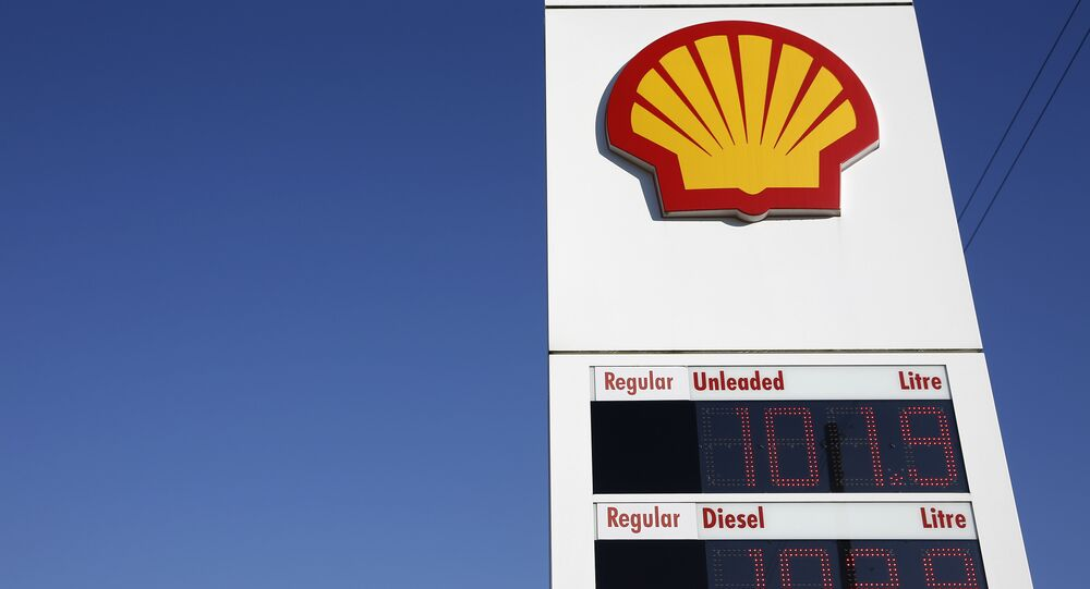 Shell logos are pictured outside a Royal Dutch Shell petrol station in Hook, near Basingstoke on January 20, 2016.
