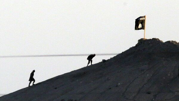 Shot with an extreme telephoto lens and through haze from the outskirts of Suruc at the Turkey-Syria border, militants with the Islamic State group are seen after placing their group's flag on a hilltop at the eastern side of the town of Kobani, Syria (File) - Sputnik International