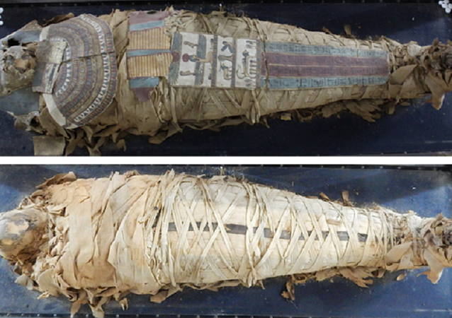 The Egyptian Mummy before treatment